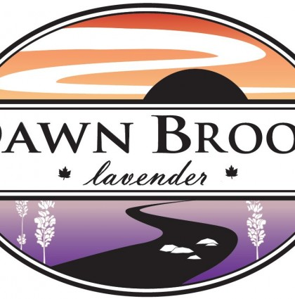 Dawn Brook Branding