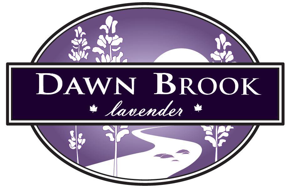 dawn as the brand